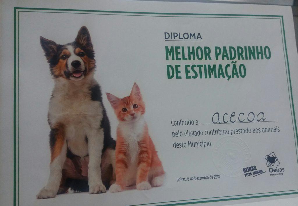 DIPLOMA MELHOR PADRINHO DE ESTIMAÇÃO